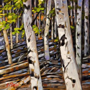 "SOLD ""The Birch Stand,"" by Graeme Shaw 12 x 12 – oil $650 Unframed"