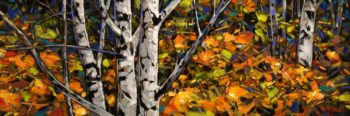 """Fall Alders,"" by Graeme Shaw 12 x 36 - oil $1450 (thick canvas wrap without frame)"