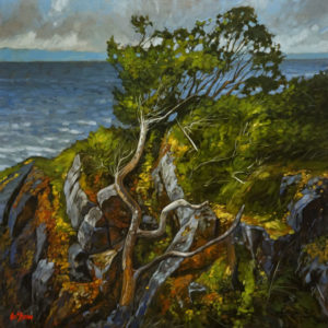 "SOLD ""Shore Line Arbutus,"" by Graeme Shaw 36 x 36 – oil $4100 (artwork continues onto edges of wide canvas wrap)"
