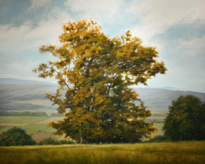 "SOLD ""Valley View"" (circa 2007), by Renato Muccillo 48 x 60 - oil $17,800 Framed"