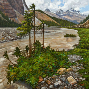 """View to Mushroom Peak from the Athabasca River,"" by Graeme Shaw 36 x 36 - oil $4100 as thick canvas wrap without frame"
