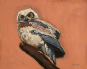 "SOLD ""Baby Owl,"" by Paul Healey 8 x 10 - oil $450 Unframed"