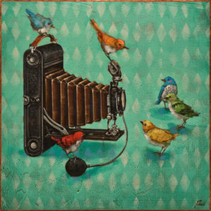 """""""Watch the Birdie,"""" by Angie Rees 16 x 16 - acrylic $1300 (unframed panel with 1 1/2"""" edges)"""
