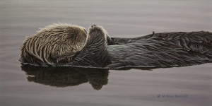 "SOLD ""Waterbed – Sea Otter,"" by W. Allan Hancock 9 x 18 – acrylic $1500 Unframed"