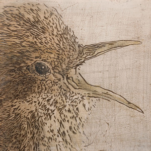 "SOLD ""Wren ... are you going to feed me?"" 8 x 8 - mixed media $350 (unframed panel with 1 1/2"" edging)"