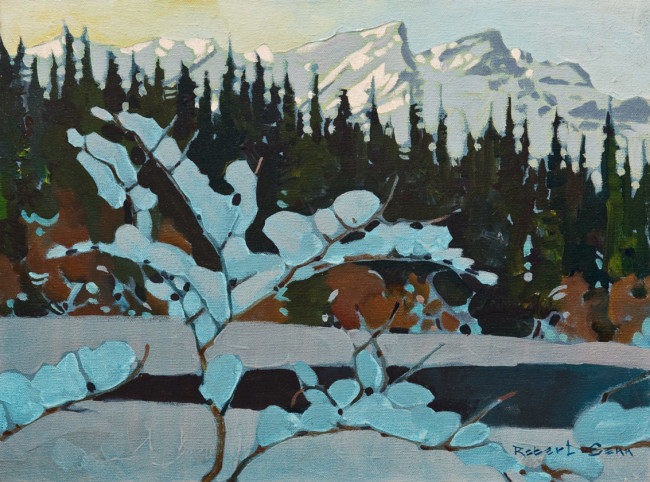 """SOLD """"Lagged Pattern, Forbidden Plateau, Vancouver Island"""" 12 x 16 - acrylic $4360 in show frame ($4135 in standard frame) $3900 Unframed"""