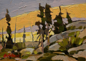 "SOLD ""Bush Rockway"" by Graeme Shaw 5 x 7 - oil $390 Unframed $560 in show frame"