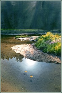 """Estuary,"" by Carol Evans 19 x 28 1/2 - Giclée on paper (edition size of 195) - $495 Unframed"