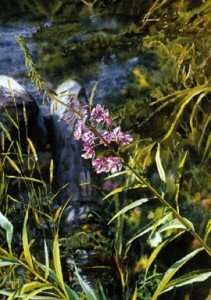 """Fireweed on the Beach,"" by Carol Evans 7 1/2 x 10 1/2 - Giclée on paper (edition size of 295) - $110 Unframed"