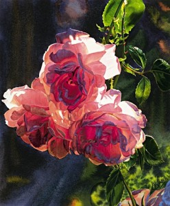 """Roses in the Morning,"" by Carol Evans 12 3/8 x 15 - Giclée on paper (edition size of 195) $245 Unframed"
