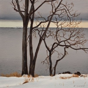 "SOLD ""Neck Point January - Garry Oaks"" by Ray Ward 8 x 8 - oil $625 Unframed $825 in show frame"