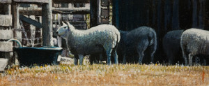 "SOLD ""Sheep Shapes,"" by Alan Wylie 4 1/2 x 12 – acrylic $880 Unframed $1040 Custom framed"