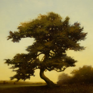 "SOLD ""Bronze Serissa,"" by Renato Muccillo 12 x 12 – oil $1750 Custom framed"