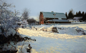 "SOLD ""December Blanket,"" by Alan Wylie 30 x 48 – oil $13,600 Framed"