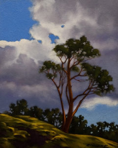 "SOLD ""Lone Arbutus,"" by Ray Ward 8 x 10 – oil $685 Framed"
