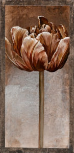 "SOLD ""Neutrals Bisque,"" by Linda Thompson 6 x 12 - acrylic $180 Unframed $330 in show frame"