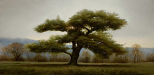 "SOLD ""October Pine,"" by Renato Muccillo 12 x 24 – oil $2500 Custom framed"
