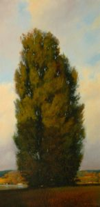 "SOLD ""Poplar in Half Light,"" by Renato Muccillo 10 x 20 – oil"