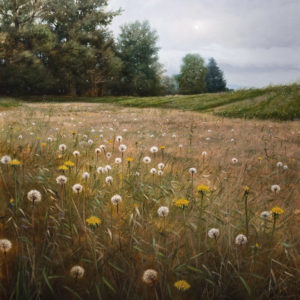"SOLD ""Seeding Meadow,"" by Renato Muccillo 30 x 30 – oil $5930 Framed"