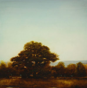 "SOLD ""Turkey Oaks (Study),"" by Renato Muccillo 18 x 18 – oil"