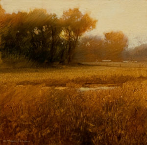 "SOLD ""Erba di Oro"" (Study), by Renato Muccillo 4 x 4 - oil on panel $995 with Show frame"