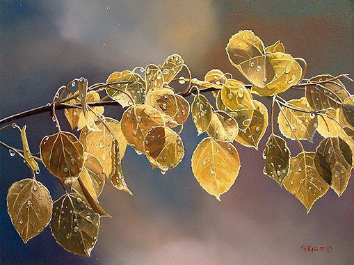 "SOLD ""Aspen Leaves"" 12 x 16 - oil $1400 Framed"