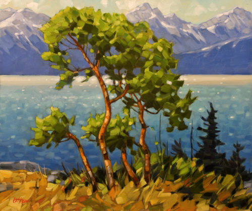 "SOLD ""Keel Cove Arbutus,"" by Graeme Shaw 20 x 24 - oil $2300 in show frame $1895 Unframed"