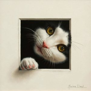 "SOLD ""Chat 19,"" (Cat 19) by Marina Dieul 8 x 8 - oil USD $1900 Framed (approx CAD $2400 Framed)"