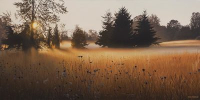 "SOLD ""Forest Morning Mist,"" by Ron Parker 20 x 40 - oil $4500 Unframed"