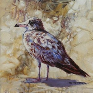 """Speckled Gull II,"" by Janice Robertson 12 x 12 - acrylic $730 (thick canvas wrap)"