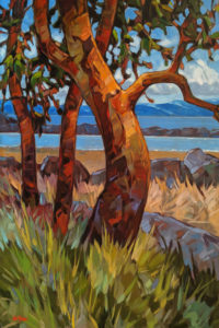 """Arbutus Afternoon,"" by Graeme Shaw 24 x 36 - oil $3015 Unframed"