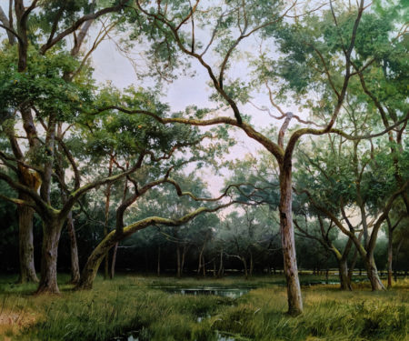 "SOLD ""Southern Tendrils,"" by Renato Muccillo 20 x 24 - oil $7500 in show frame"