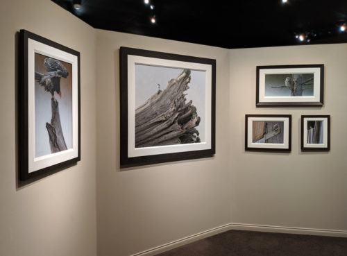 Timeless Show Fall 2019 W. Allan Hancock gallery wall