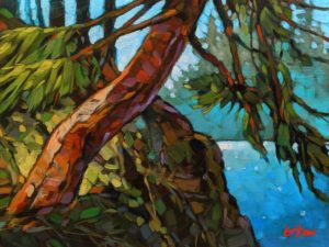"SOLD ""Jedediah Bay Fir,"" by Graeme Shaw 9 x 12 - oil $580 Unframed $800 in show frame"