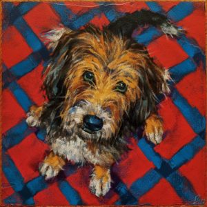 "SOLD ""Holy Terrier,"" by Angie Rees 12 x 12 - acrylic $825 (unframed panel with 1 1/2"" edges)"