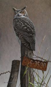 """SOLD """"Visiting Ours - Great Horned Owl,"""" (commission) by W. Allan Hancock 13 x 22 - acrylic $2420 Unframed"""