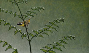"""SOLD """"Leaning into Spring - Common Yellowthroat,"""" by W. Allan Hancock 12 x 20 - acrylic $1950 Unframed"""