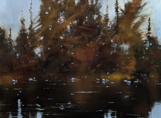 """""""Mirror Remains,"""" by David Lidbetter 22 x 30 - oil $2860 Unframed"""