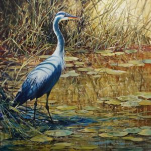 """SOLD """"Great Blue,"""" by Janice Robertson 36 x 36 - acrylic $4150 (thick canvas wrap)"""