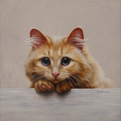 """Chat 20"" (Cat 20) by Marina Dieul 10 x 10 - oil USD $2500 Framed (approx CAD $3250 Framed)"