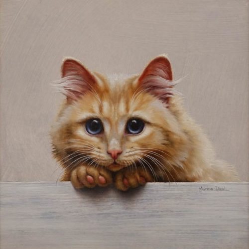 """""""Chat 20"""" (Cat 20) by Marina Dieul 10 x 10 - oil USD $2500 Framed (approx CAD $3250 Framed)"""