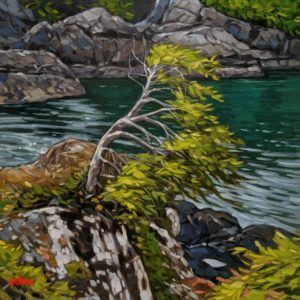 """SOLD """"As the Tide Comes In, Ucluelet,"""" by Graeme Shaw 12 x 12 - oil $685 Unframed"""