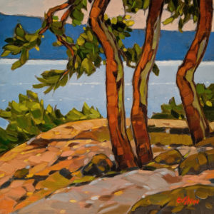 """SOLD """"Knob Hill Lookout, Nanoose Bay,"""" by Graeme Shaw 10 x 10 - oil $570 Unframed"""